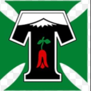 INFORMATIVO CLUB DEPORTES TEMUCO SADP